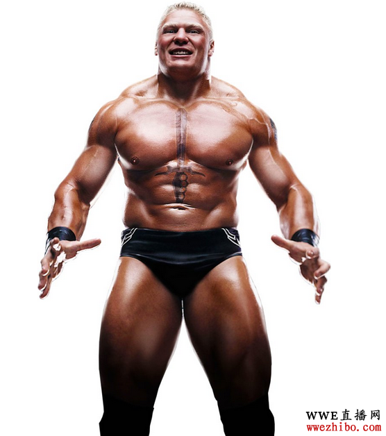 布洛克·莱斯纳 wwe摔跤选手